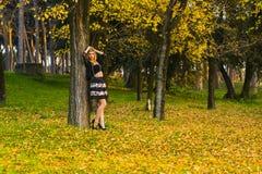 Czarodziejski las w jesieni w Włochy Zdjęcia Royalty Free