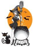 Czarownica kocioł I kota nietoperz ilustracji
