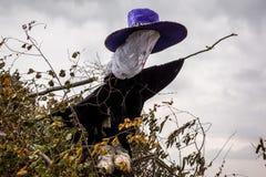 Czarownica w dużym kapeluszu na ognisko czarownicie w dużym kapeluszu na bonfir Obraz Royalty Free