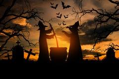 Czarownica w Halloween nocy Fotografia Stock