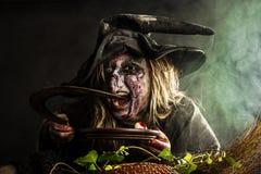Czarownica w mgle Fotografia Stock