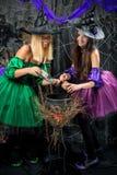 Czarownicy z garnkiem dla napojów miłosnych pozować Fotografia Stock