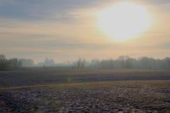 Czarowny krajobraz przy żółtym wschodem słońca zdjęcie royalty free