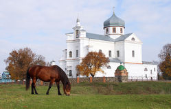 Czartoryski Heilig Dwarsklooster Stock Afbeelding