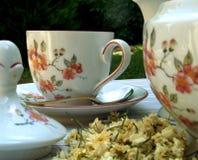 czas herbaty Zdjęcia Stock