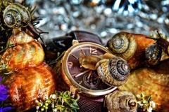 Czas snailing daleko od fotografia royalty free