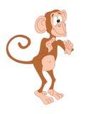 czas trwania, małpa Fotografia Stock