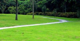 Czas wolny ścieżka w parku Obraz Stock