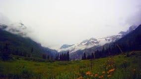 Czasu upływ góry i łąka w lodowa parku narodowym zbiory wideo