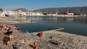 Czasu upływ przy świętymi ghats na wodnym stawie w Pushkar, Rajasthan, India, święty miasteczko dla hinduskich ludzi zdjęcie wideo