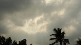 Czasu upływ zmrok chmury i słońce promienie nad drzewkami palmowymi na plaży zbiory