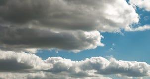 Czasu upływu klamerka kilka puszyste kędzierzawe kołysanie się chmury warstwy w wietrznej pogodzie zbiory wideo