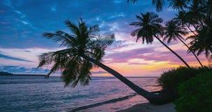 Czasu upływu tropikalna plaża i morze przy zmierzchem Kolorowy dramatyczny niebo przy półmrokiem, kokosowej palmy frond sylwe zbiory wideo