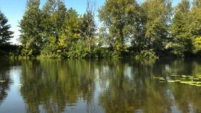 Czasu upływu widok rzeka w jasnym pogodnym odbiciu drzewa w wodzie i letnim dniu Ukraina zbiory