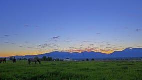 Czasu upływu złoty wschód słońca zdjęcie wideo