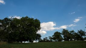 Czasu upływ wiejski krajobraz z drzewami zbiory wideo