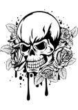 Czaszek róże Zdjęcie Royalty Free