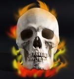 czaszkę płomieni Obraz Stock