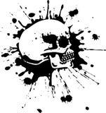 czaszka Obraz Stock