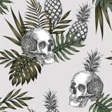 Czaszka ananasa światła tło royalty ilustracja