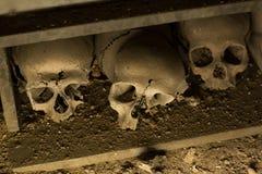 Czaszka i kości obraz stock