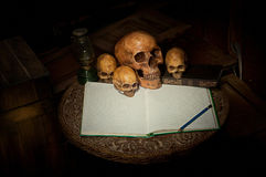 Czaszka i notatnik na starym drewnie Fotografia Royalty Free