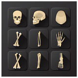 Czaszka, kość I zdrowie ikony set Medyczni Zdjęcia Royalty Free