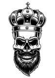 Czaszka królewiątko również zwrócić corel ilustracji wektora Zdjęcie Royalty Free