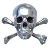czaszka metalicznej Zdjęcia Stock