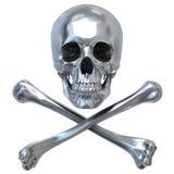 czaszka metalicznej Obraz Stock