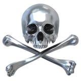 czaszka metalicznej Fotografia Stock
