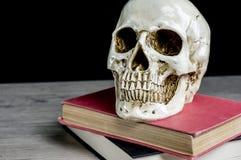 Czaszka na rocznik książkach Zdjęcie Stock