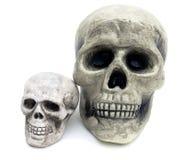 czaszka odosobniony straszny biel dwa Fotografia Stock