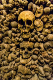 Czaszki i kości od charnel domu obrazy stock