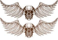 czaszki oskrzydlone Zdjęcie Royalty Free