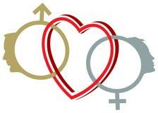 Łączący płeć symbole Zdjęcia Stock