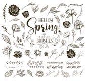 Cześć wiosna kwiecistego projekta elementy obrazy royalty free