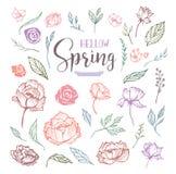Cześć wiosna kwiecistego projekta elementy zdjęcia stock