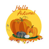 Cześć jesień Obrazy Stock