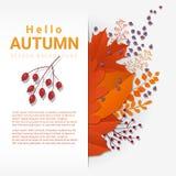 Cześć jesień z kolorowym liści i owoc tłem Obrazy Royalty Free