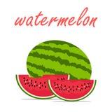 Cześć lato arbuza owocowy wektor Obrazy Stock