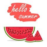 Cześć lato arbuza owocowy wektor Zdjęcie Stock