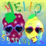 Cześć lato cytryny i winogrona wektor royalty ilustracja