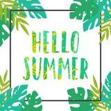 Cześć lato czarny rama opuszczać tropikalnego biel Fotografia Royalty Free
