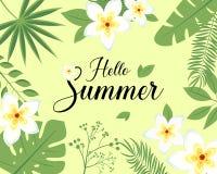 Cześć lato liścia kwiatu frangipani plumeria realistyczny sztandar, plakat Retro literowanie szablon z złotą ramą na beżowym back ilustracja wektor