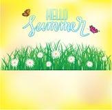 Cześć lato, Motyli latanie nad trawa z kwiatami, wiosna Zdjęcie Stock
