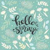 Cześć wiosna - kwiecisty karciany wektor Zdjęcia Royalty Free