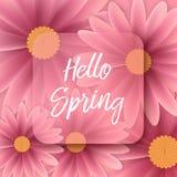 Cześć wiosna tekst, kwiecisty tło Obrazy Royalty Free