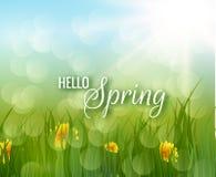 Cześć wiosna wektoru tło Fotografia Stock