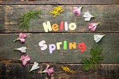Cześć wiosna z kwiatami Obraz Stock